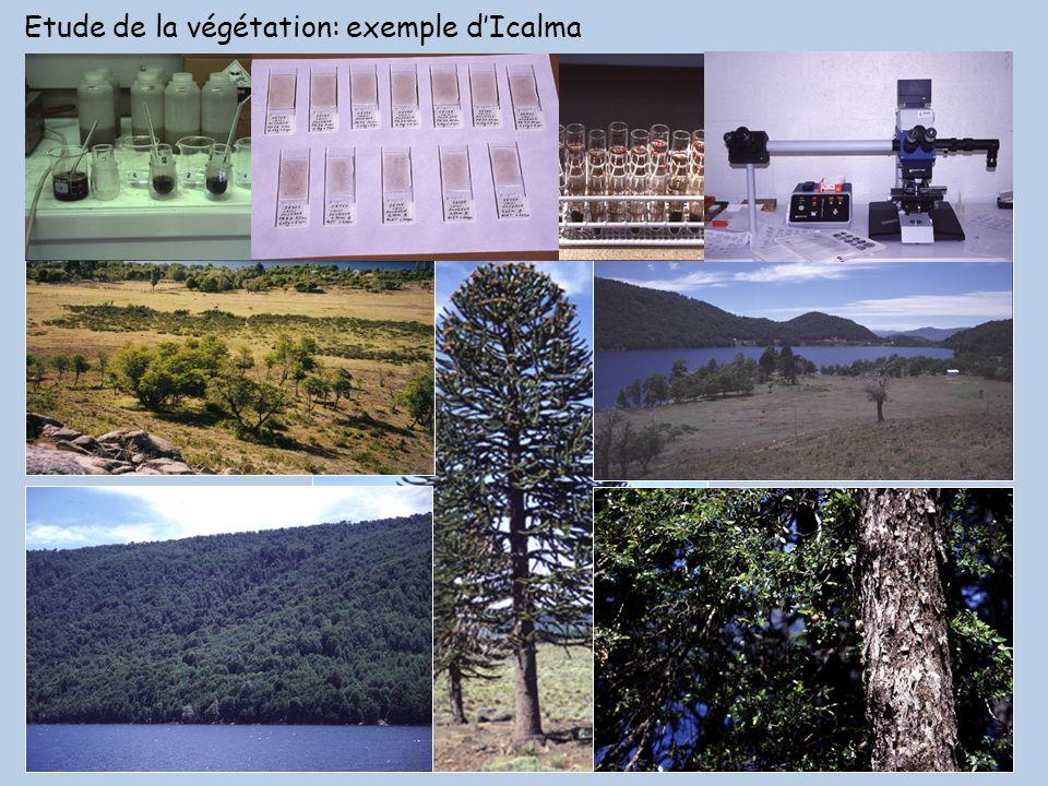 Etude de la végétation: exemple dIcalma