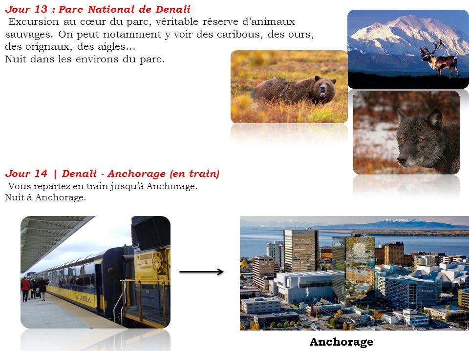 Jour 13 : Parc National de Denali Excursion au cœur du parc, véritable réserve danimaux sauvages. On peut notamment y voir des caribous, des ours, des