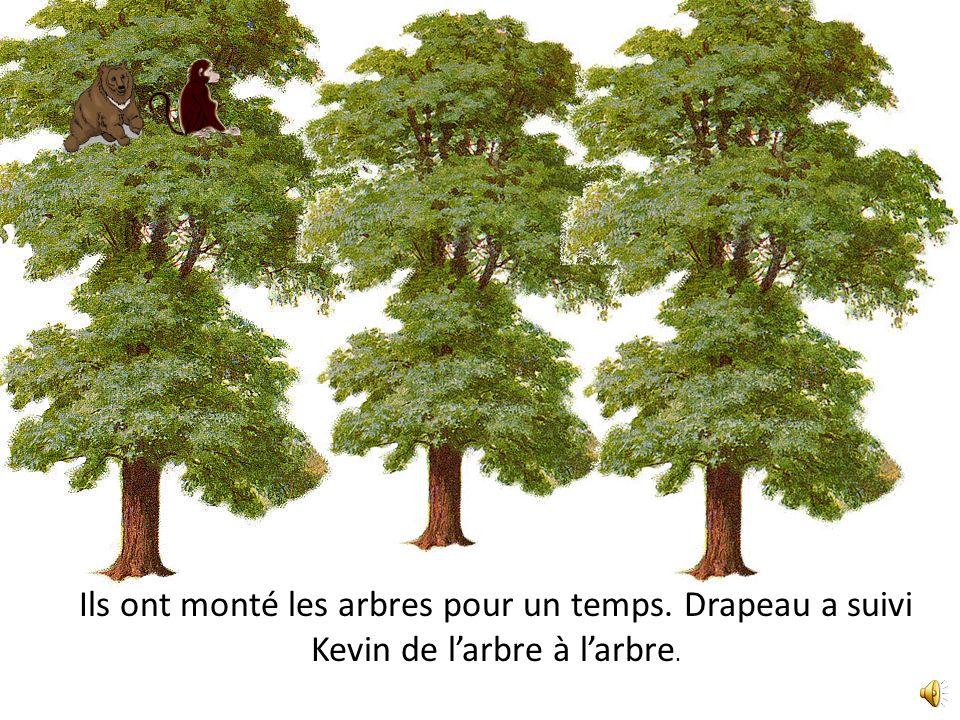 Ils ont monté les arbres pour un temps. Drapeau a suivi Kevin de larbre à larbre.