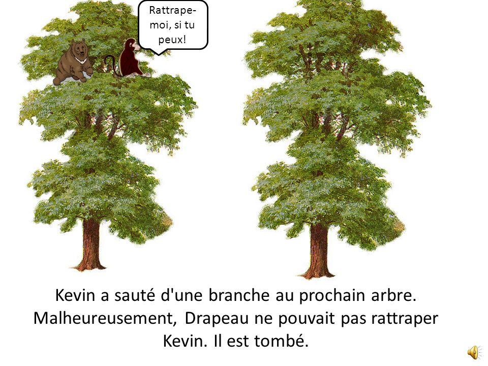 Kevin a sauté d une branche au prochain arbre.