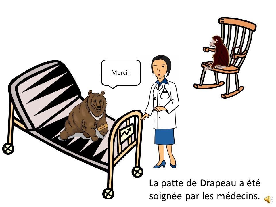 La patte de Drapeau a été soignée par les médecins. Merci!