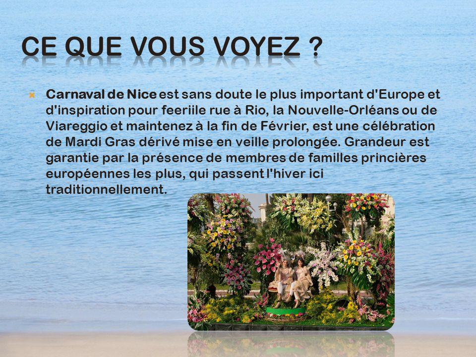 Carnaval de Nice est sans doute le plus important d'Europe et d'inspiration pour feeriile rue à Rio, la Nouvelle-Orléans ou de Viareggio et maintenez