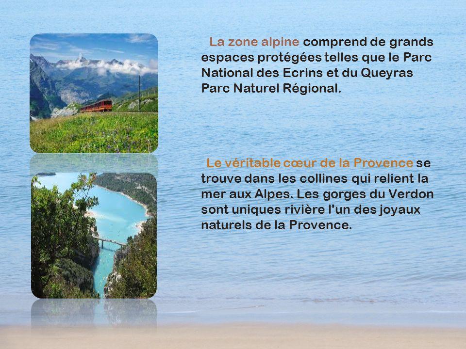 La zone alpine comprend de grands espaces protégées telles que le Parc National des Ecrins et du Queyras Parc Naturel Régional. Le véritable cœur de l