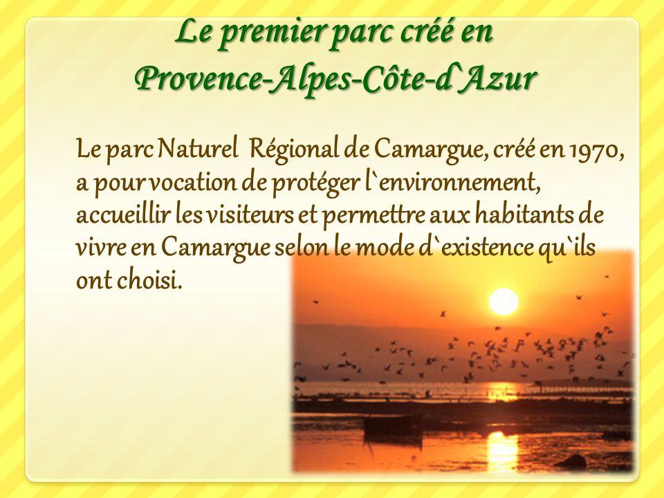 La Camargue constitue un exemple d`équilibre entre l`environnement et les activités humaines. L`homme y gère la nature pour la valoriser et la protége