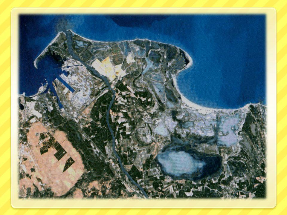 Le premier parc créé en Provence-Alpes-Côte-d`Azur Le parc Naturel Régional de Camargue, créé en 1970, a pour vocation de protéger l`environnement, ac