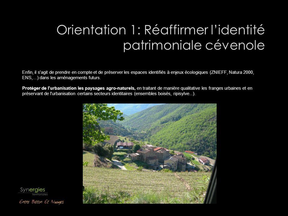 Orientation 1: Réaffirmer lidentité patrimoniale cévenole Enfin, il s agit de prendre en compte et de préserver les espaces identifiés à enjeux écologiques (ZNIEFF, Natura 2000, ENS,…) dans les aménagements futurs.