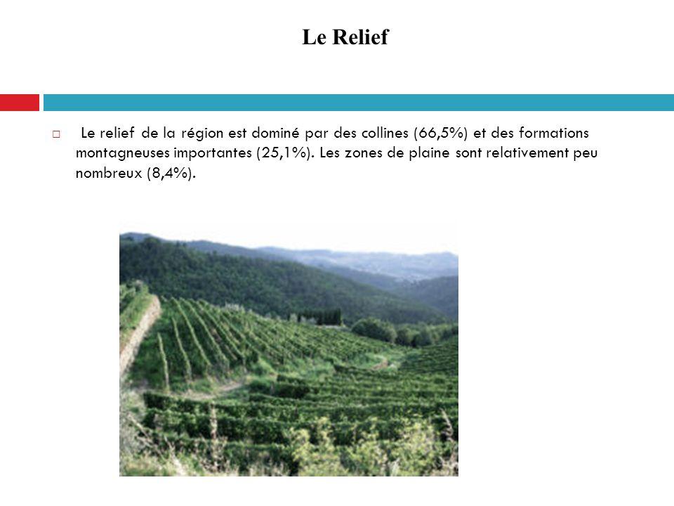 Le relief de la région est dominé par des collines (66,5%) et des formations montagneuses importantes (25,1%). Les zones de plaine sont relativement p