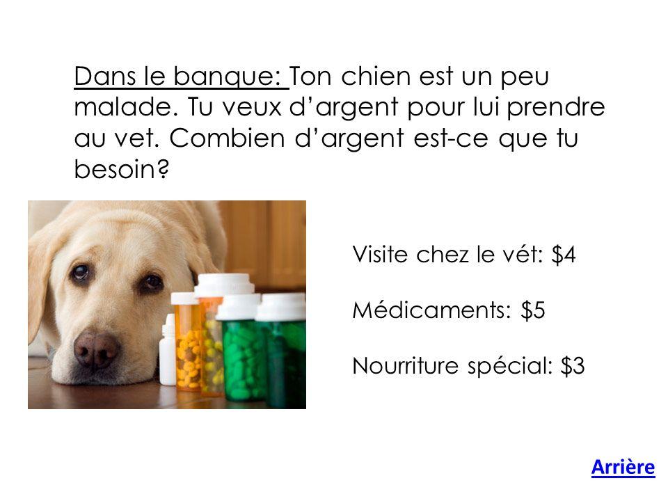 Arrière Dans le banque: Ton chien est un peu malade.