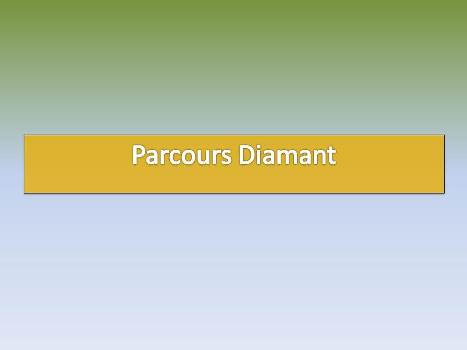 Player : Antonio Parcours : Diamant Score : 50 / 200 Défis réussis : 10 Score : 50 / 200 Défis réussis : 10 Temps écoulé : 40 min