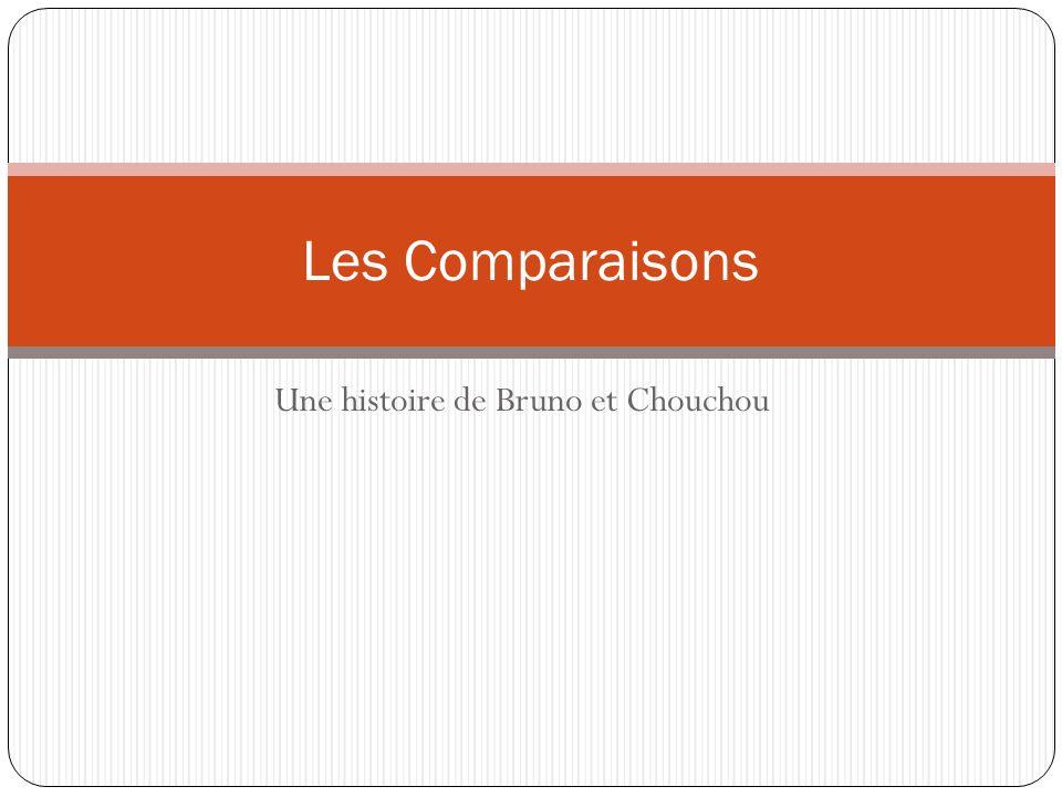 Une histoire de Bruno et Chouchou Les Comparaisons