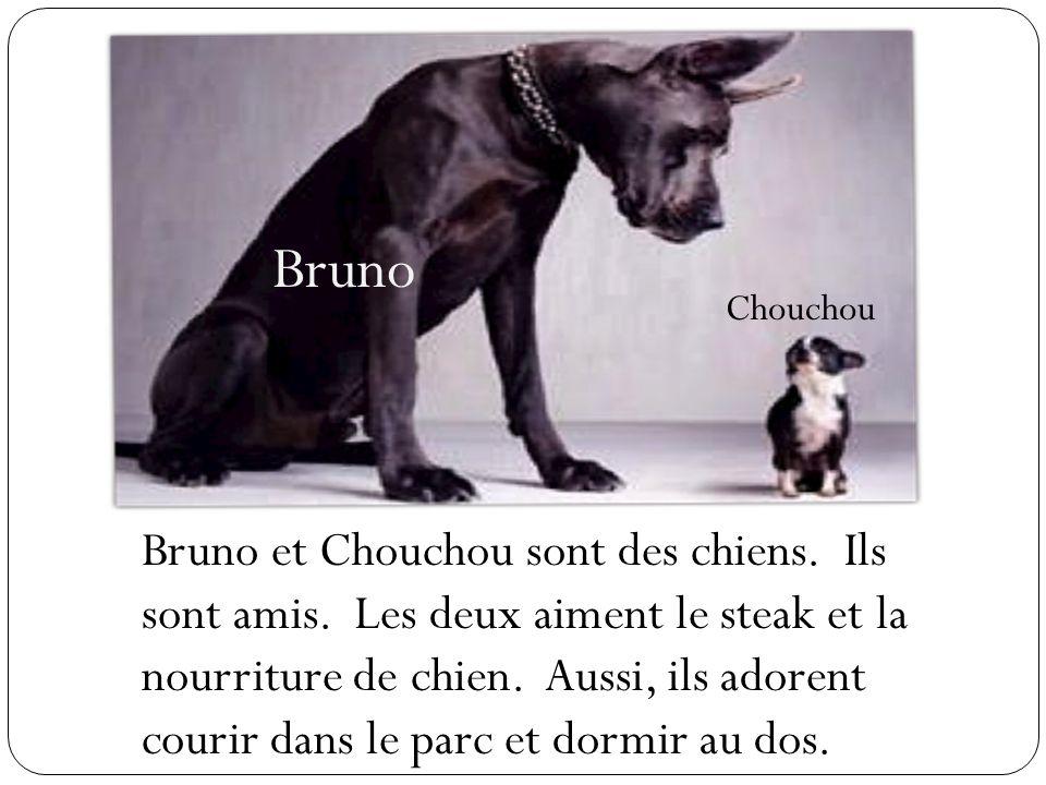 Bruno Chouchou Bruno et Chouchou sont des chiens. Ils sont amis. Les deux aiment le steak et la nourriture de chien. Aussi, ils adorent courir dans le