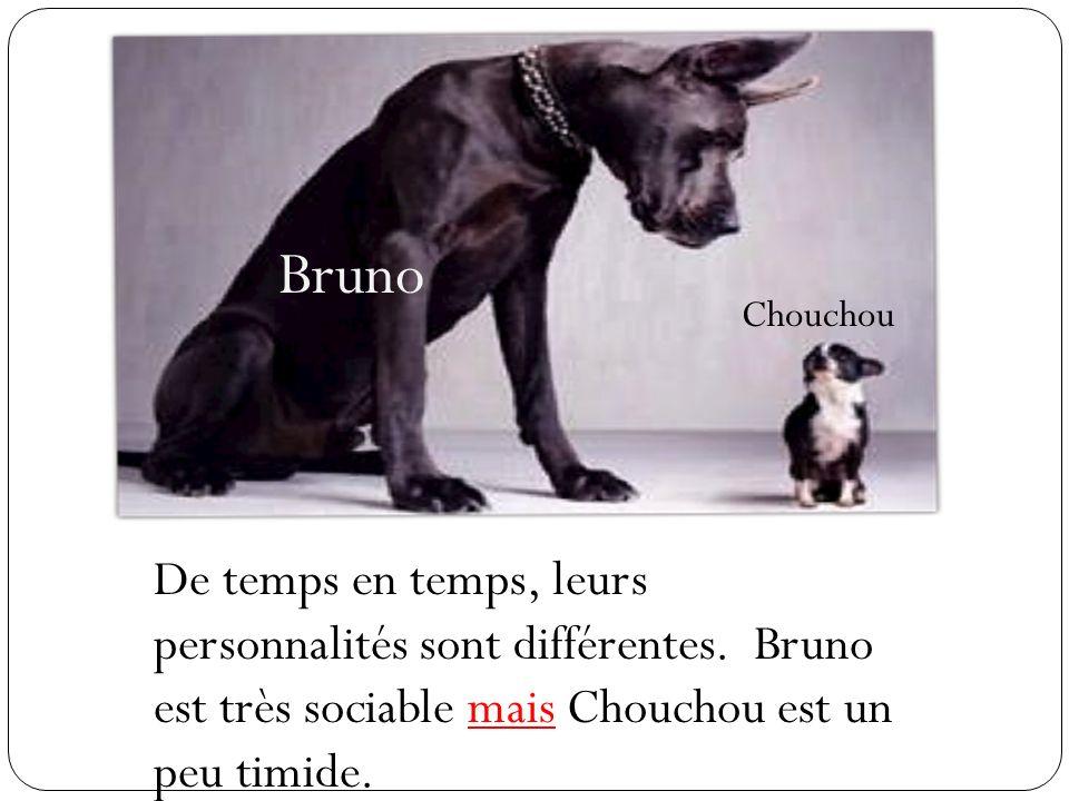 Bruno Chouchou De temps en temps, leurs personnalités sont différentes. Bruno est très sociable mais Chouchou est un peu timide.