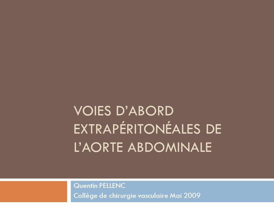 VOIES DABORD EXTRAPÉRITONÉALES DE LAORTE ABDOMINALE Quentin PELLENC Collège de chirurgie vasculaire Mai 2009