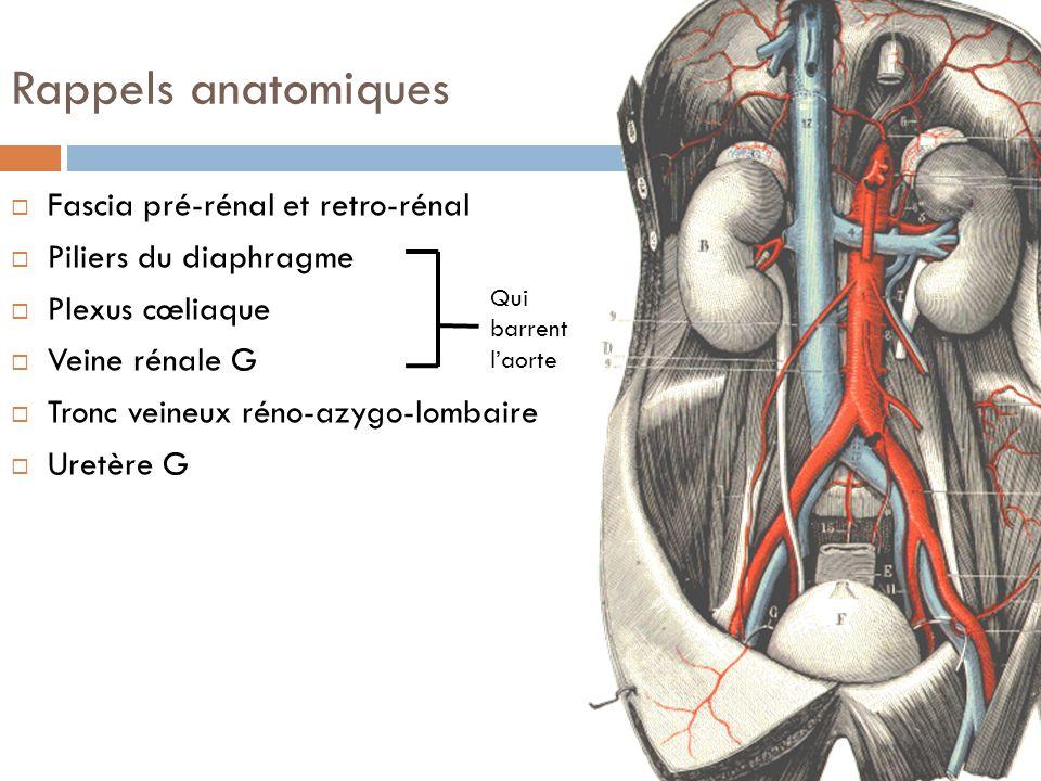 Rappels anatomiques Fascia pré-rénal et retro-rénal Piliers du diaphragme Plexus cœliaque Veine rénale G Tronc veineux réno-azygo-lombaire Uretère G Q