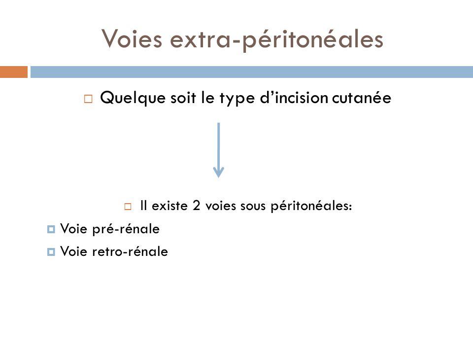 Voies extra-péritonéales Quelque soit le type dincision cutanée Il existe 2 voies sous péritonéales: Voie pré-rénale Voie retro-rénale