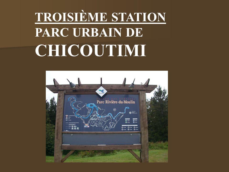 TROISIÈME STATION PARC URBAIN DE CHICOUTIMI