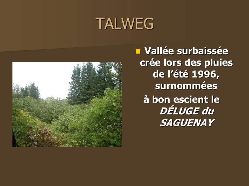 TALWEG Vallée surbaissée crée lors des pluies de lété 1996, surnommées Vallée surbaissée crée lors des pluies de lété 1996, surnommées à bon escient l