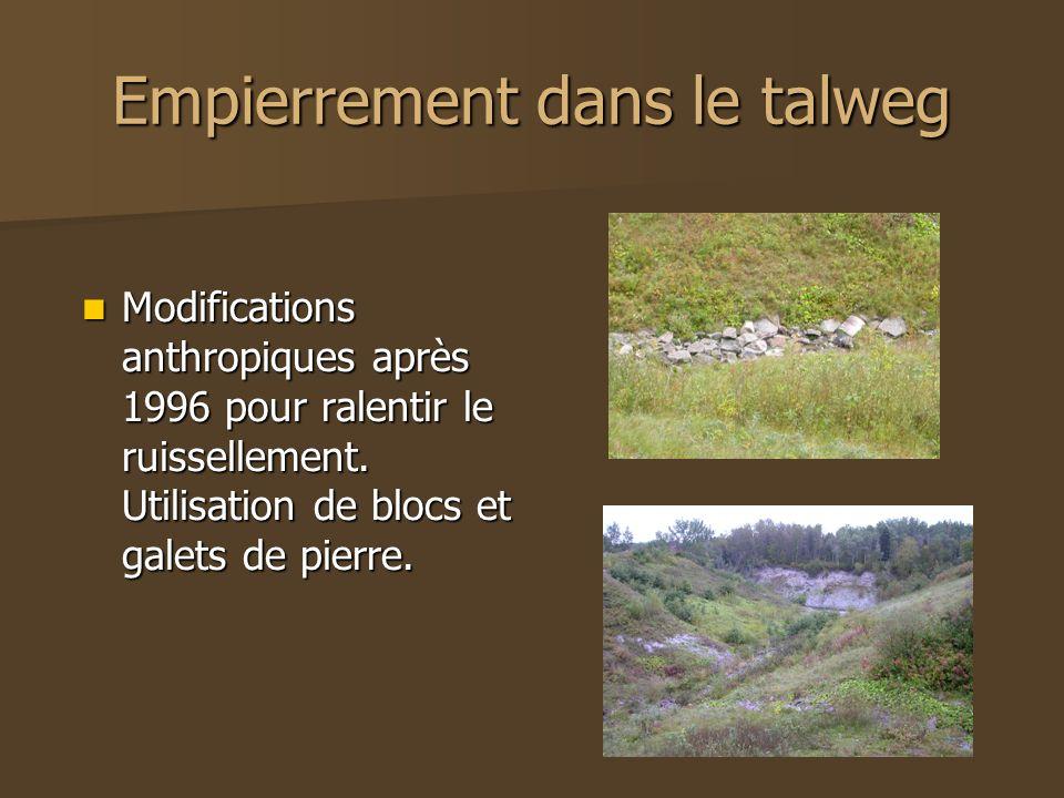 Empierrement dans le talweg Modifications anthropiques après 1996 pour ralentir le ruissellement. Utilisation de blocs et galets de pierre. Modificati