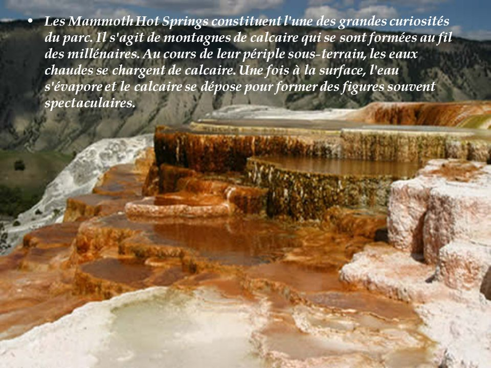 Monticule orange de ressort parc national de Yellowstone