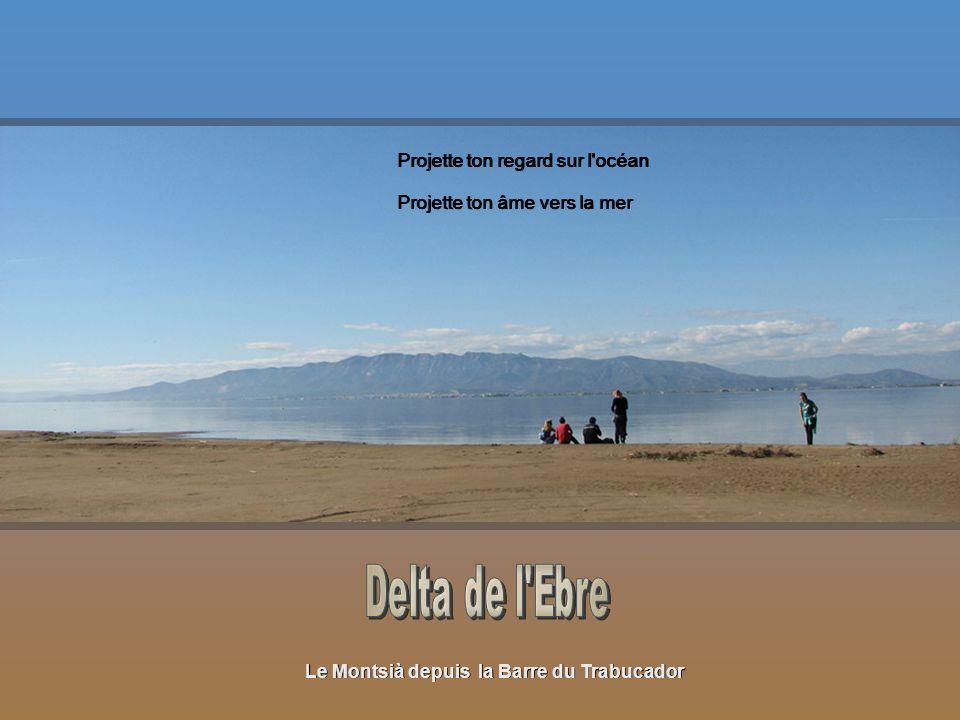 Delta de lEbre Prends ces morceaux d espoirs, gravés avec des larmes Nous nous envolerons au-dessus de ces préoccupations terrestres