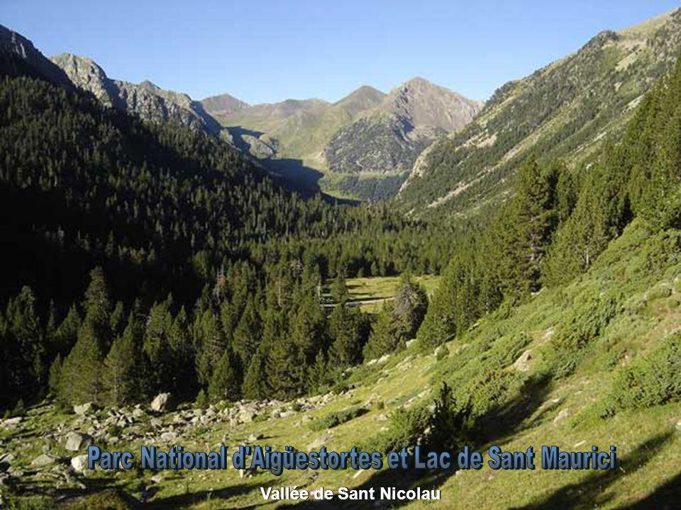 Alors que la montagne s élève devant moi Par le profond souhait du désir Pollegó Superior (2.497 m) Dans le Parc Naturel de Cadí-Moixeró Pollegó Superior (2.497 m) Dans le Parc Naturel de Cadí-Moixeró