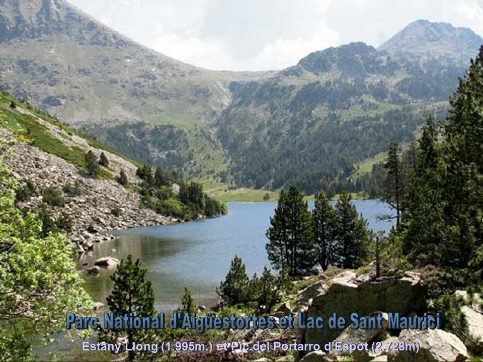Pica dEstats (3.143 m.) et Vall Ferrera depuis le Col de Sotllo
