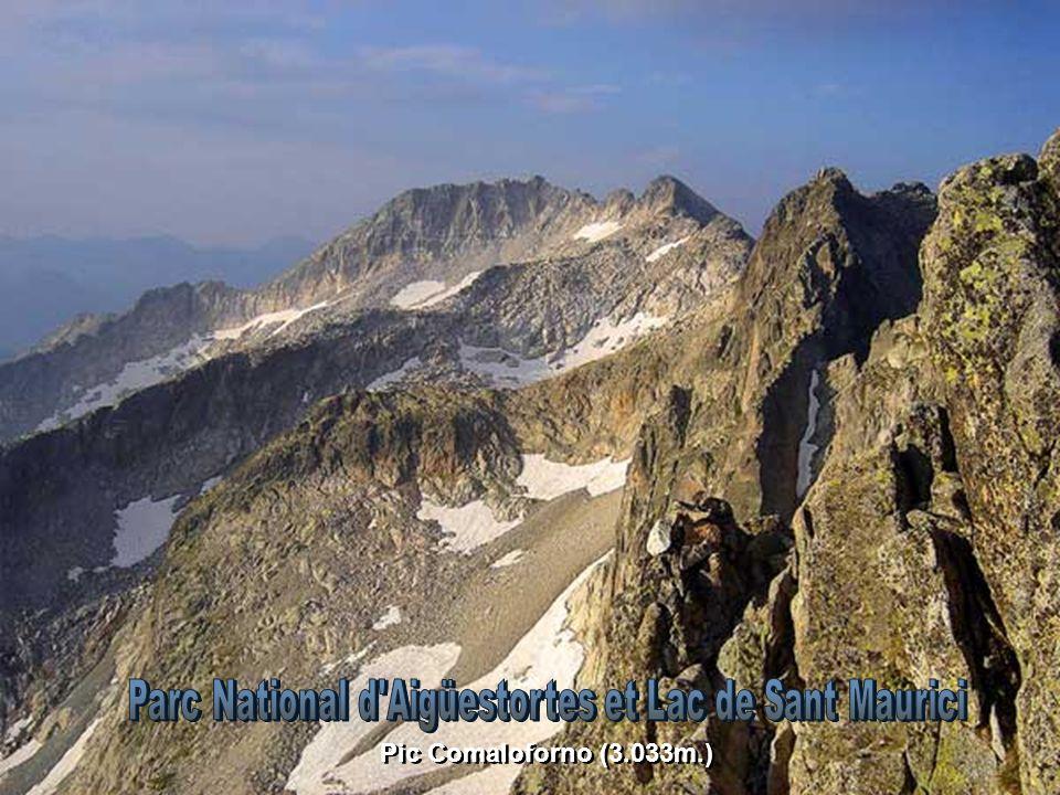 Estany Llong (1.995m.) et Pic del Portarro d'Espot (2.728m)