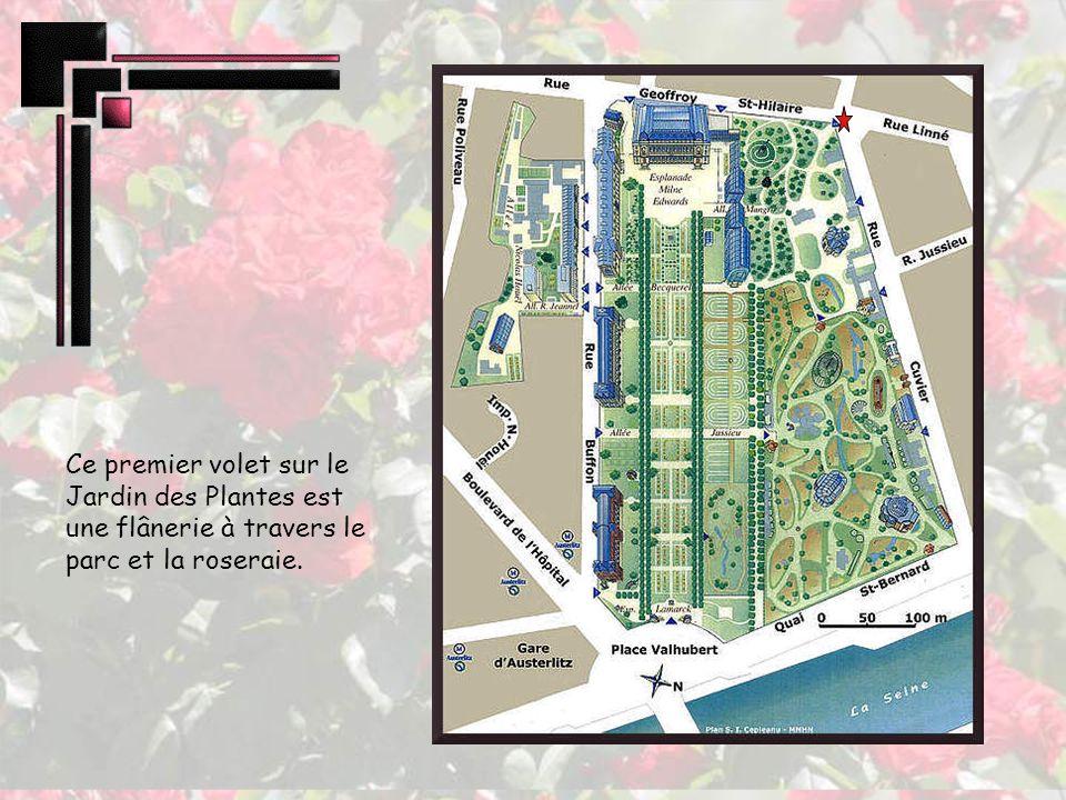 Fondé en 1626 par deux médecins de Louis XIII, ce jardin botanique est ouvert au public en 1640 et se développe sous la direction de Buffon de 1739 à 1788.
