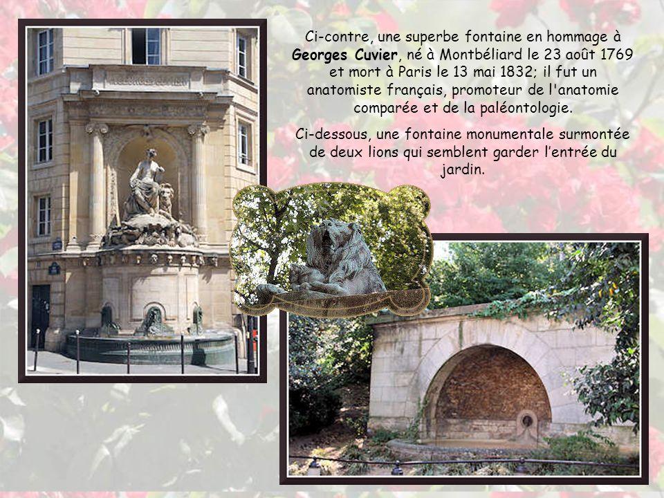 Cette entrée magnifique se trouve à langle des rues Linné, Cuvier et Geoffroy Saint-Hilaire.