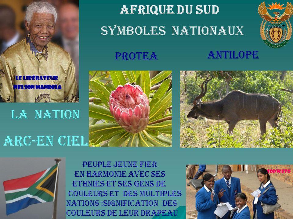 La cellule LAfrique du Sud cest Nelson Mandela qui par sa détermination A su libérer les siens et unir en Harmonie toute la nation.