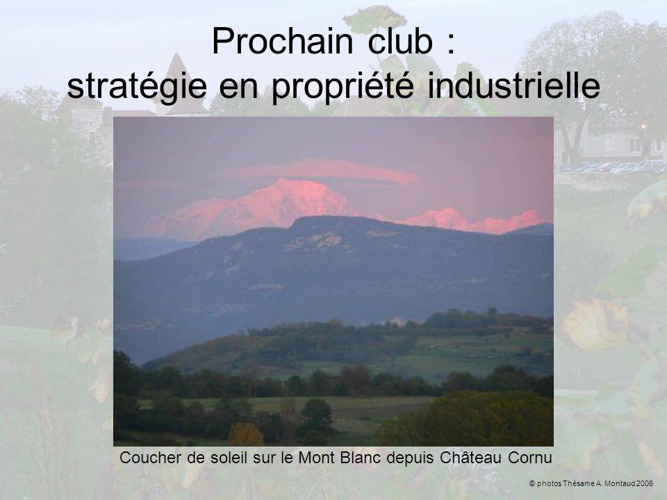 Prochain club : stratégie en propriété industrielle Coucher de soleil sur le Mont Blanc depuis Château Cornu © photos Thésame A. Montaud 2006