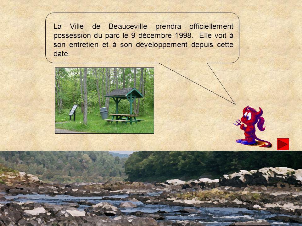 À lautomne 1999, on procède à une coupe sélective dans le parc pour faciliter la régénération de la forêt dans le cadre du Programme de mise en valeur des ressources du milieu forestier du gouvernement du Québec.