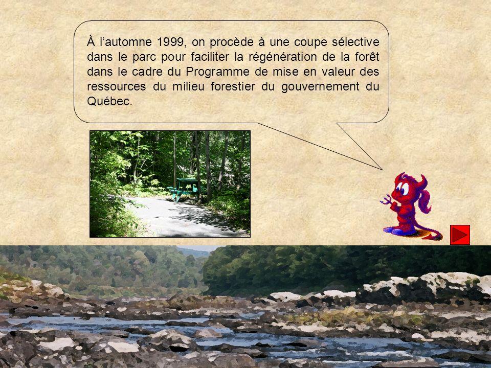 À lété 2000, dans le cadre du Programme des partenariats du millénaire du Canada, les autorités municipales ont approuvé divers travaux majeurs damélioration du site dont laménagement du sentier longeant la rivière.