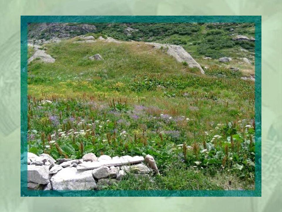 Ce petit chemin fait le tour du lac, à travers les pâturages fleuris et les ruisseaux qui cascadent. La chapelle St-Barthélémy fut construite par Mich