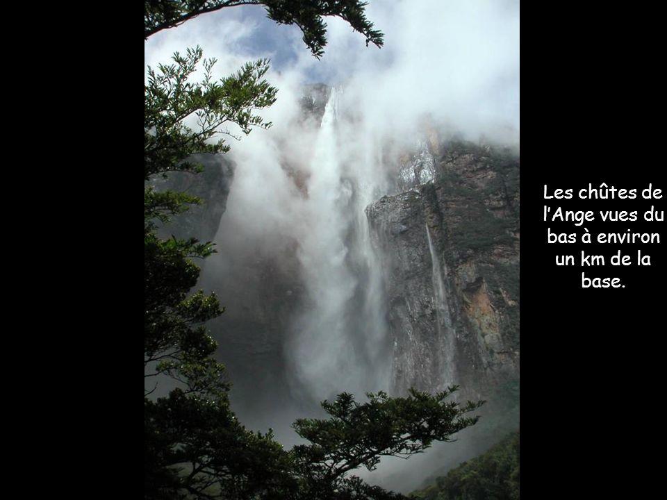 Les chutes de lAnge Nom autochtone : Kerepakupay Vená Les chutes de lAnge sont les plus hautes chutes deau douce du monde avec une hauteur de 979 mètres et une chute ininterrompue de 807 mètres.