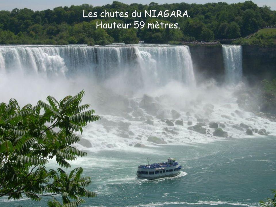 Les chutes suivantes consistent en fait denviron 270 chutes sétalant sur une distance de 2,7 kilomètres sur la rivière Iguazu.
