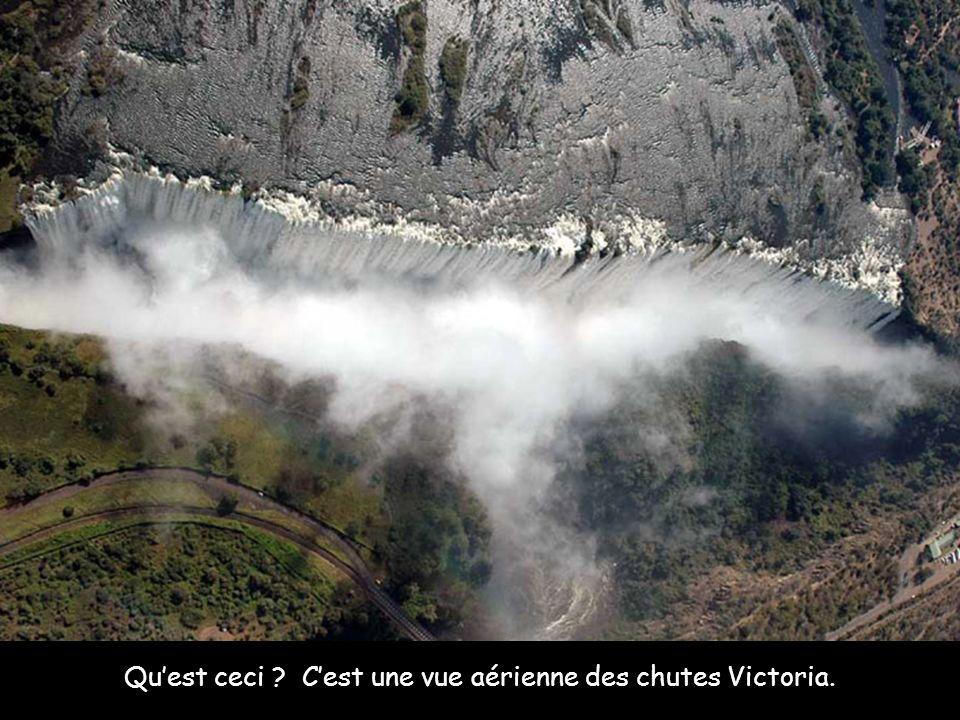 Quest ceci ? Cest une vue aérienne des chutes Victoria.