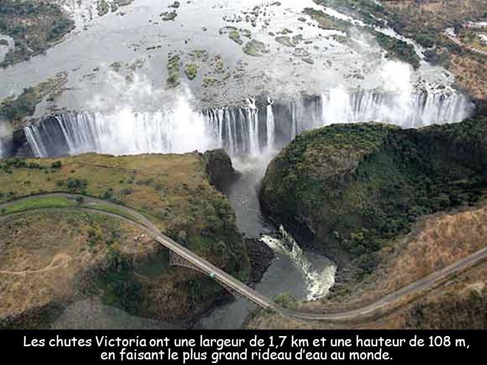 Rappelez-vous que les chutes du Niagara ne sont pas les seules dignes de mention. BONNE JOURNÉE