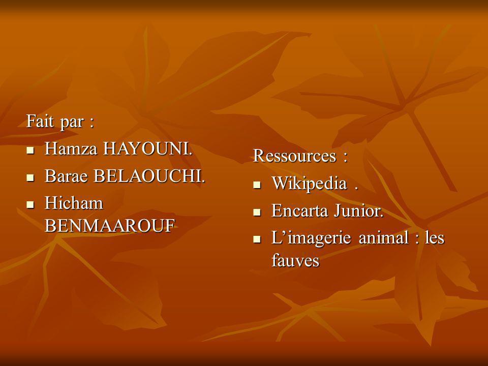 Fait par : Hamza HAYOUNI. Hamza HAYOUNI. Barae BELAOUCHI. Barae BELAOUCHI. Hicham BENMAAROUF Hicham BENMAAROUF Ressources : Wikipedia. Wikipedia. Enca