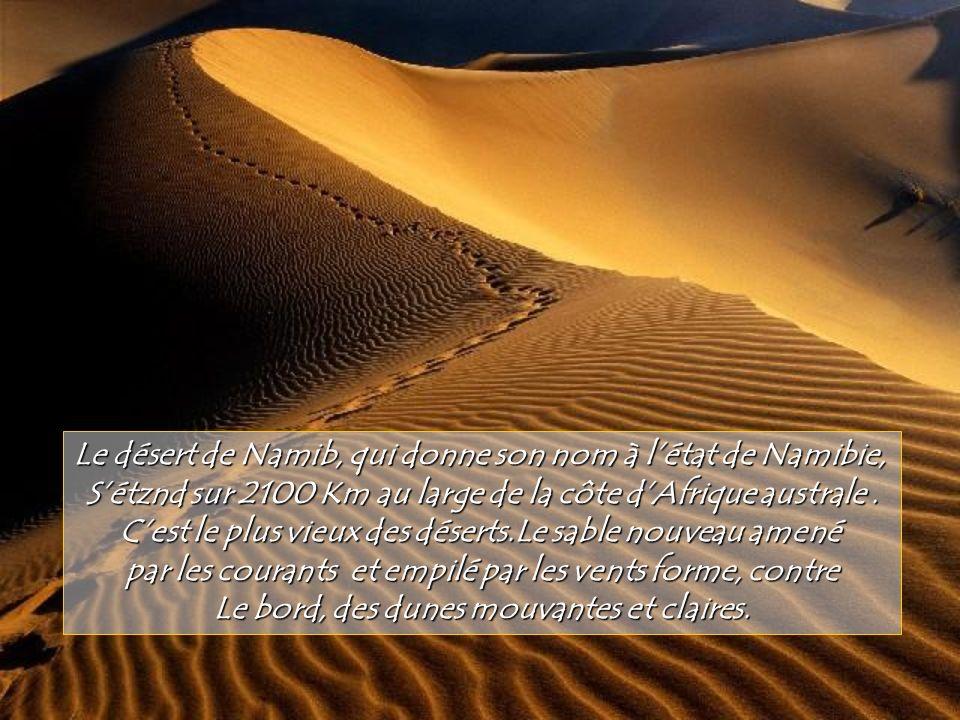 Le fond de cet immense crater effondré ou caldera, protégé de la réserve naturelle de Krokotski en Russie est Tapissé dune végétation rare qui cache u
