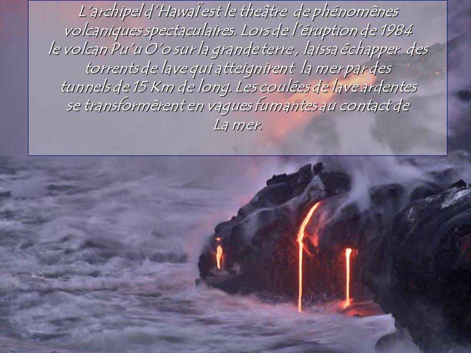 Les photos et les textes viennent de LInternaute.com