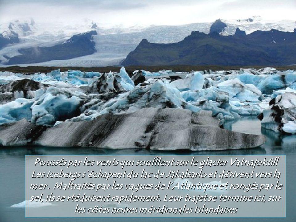 Larchipel dHawaÏ est le theâtre de phénomènes volcaniques spectaculaires. Lors de léruption de 1984 le volcan Puu Oo sur la grande terre, laissa échap