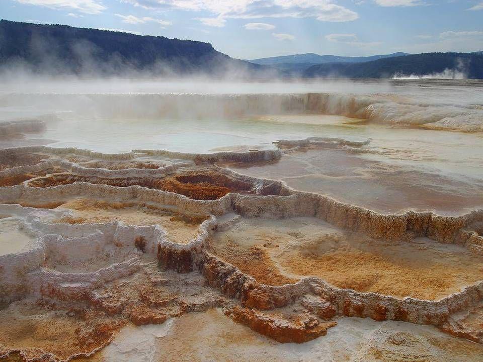 Les Mammoth Hot Springs constituent l une des grandes curiosités du parc.