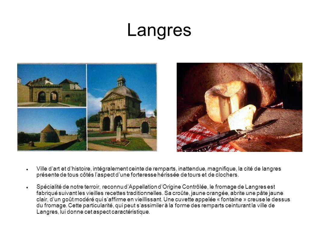Dolmen-La Pierre Alot Cest dans le voisinage de Nogent que nous trouvons les deux mégalithes les plus importants de Haute-Marne.