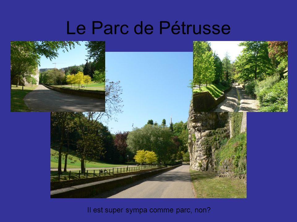 Le Parc de Pétrusse Il est super sympa comme parc, non?