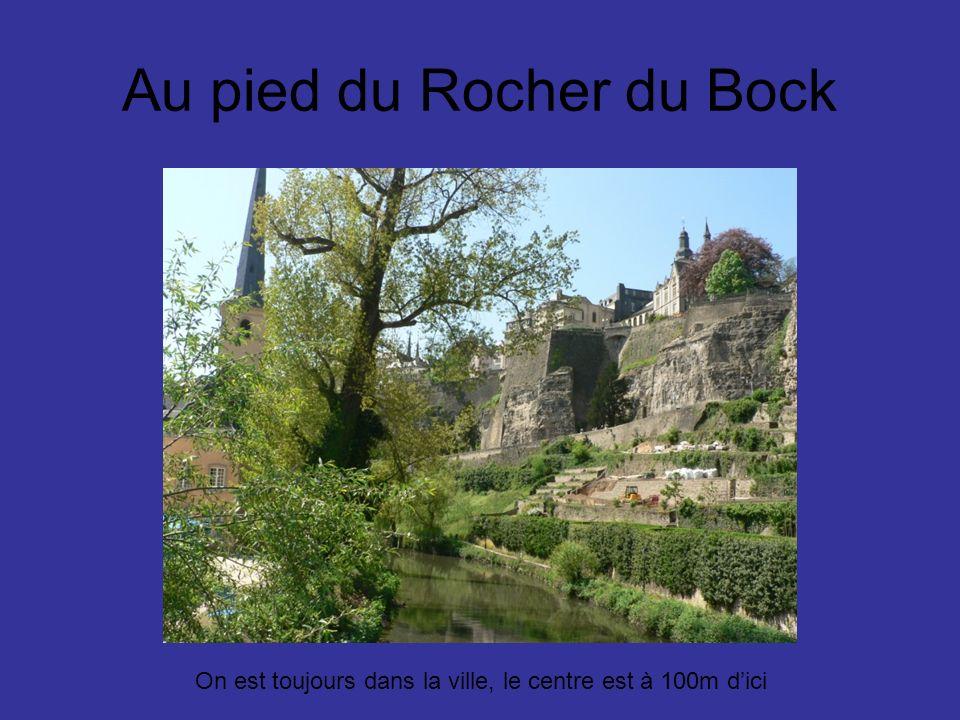 Au pied du Rocher du Bock On est toujours dans la ville, le centre est à 100m dici
