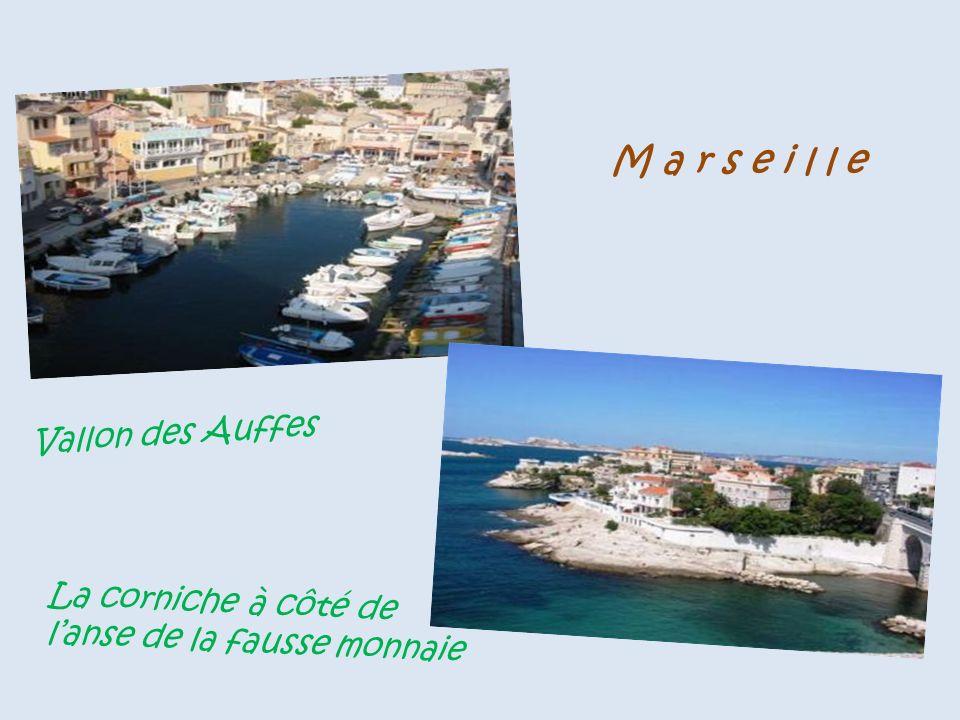 Les Saintes-Maries-de-la-Mer le bac ( Barge ) du Sauvage, traversée du Petit-Rhône