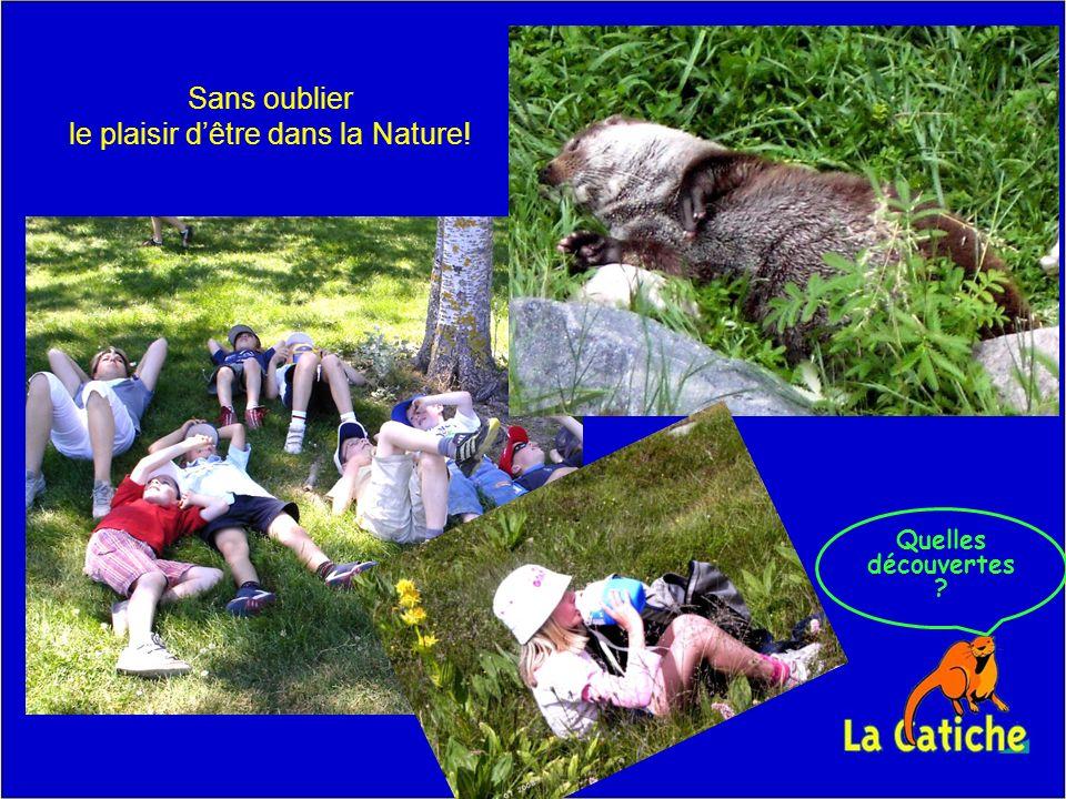 Quelles découvertes Sans oublier le plaisir dêtre dans la Nature!