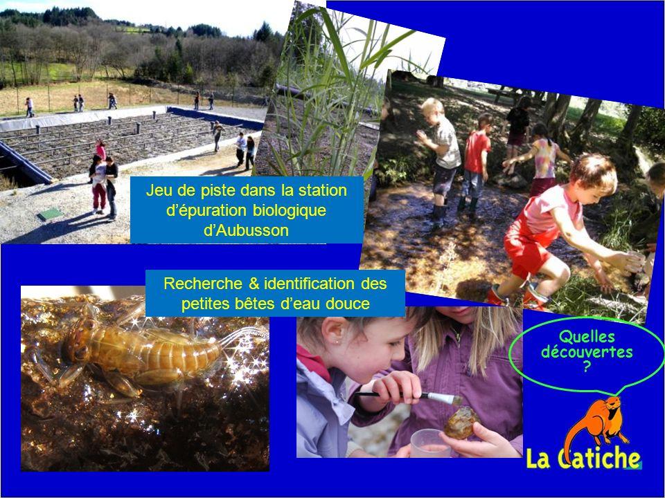 Jeu de piste dans la station dépuration biologique dAubusson Recherche & identification des petites bêtes deau douce Quelles découvertes