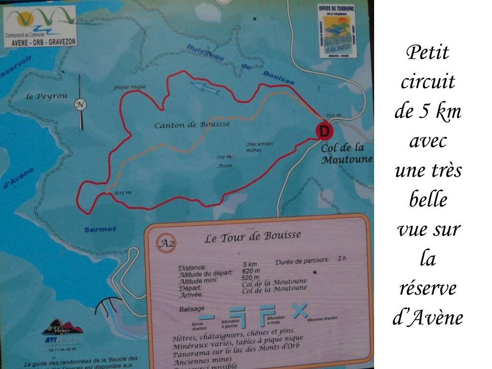 Le Tour de Buisse près dAvène avec 34 participants